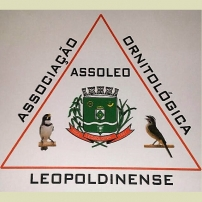 Leopoldina/MG (ASSOLEO) - Temporada 2017/18